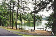 a view of Lake Allatoona from Clark Creek North Campground
