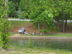 Lake Allatoona, Old Highway 41 #1 picnic area