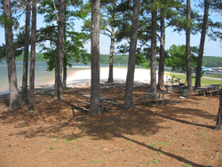 Lake Allatoona, Victoria Park picnic tables