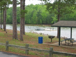 the Field's Landing fishing dock